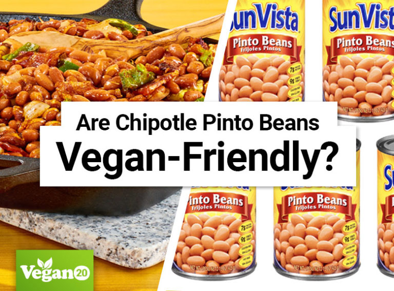 Are Chipotle Pinto Beans Vegan?