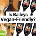 Is Baileys Vegan-Friendly?